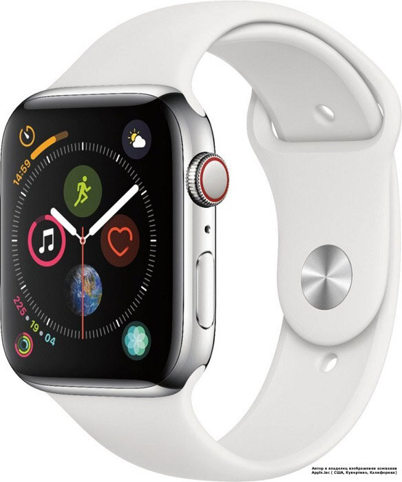 Apple Watch 5 (GPS + Cellular) 40mm Stainless Steel Case with White Sport Band (MWWR2)