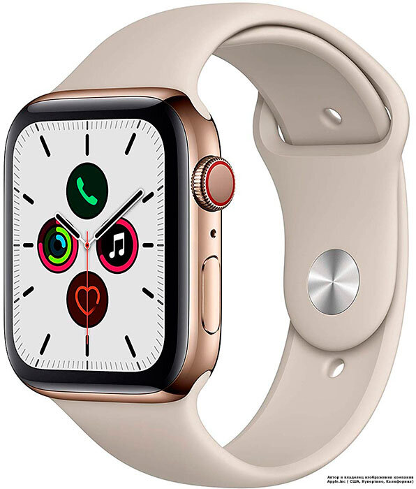 Apple Watch 5 (GPS + Cellular) 40mm Gold Stainless Steel Case with Stone Sport Band (MWWU2)